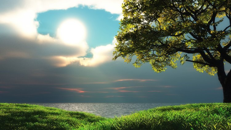green-ocean-sun-trees-sea-grass-hdr1.jpg